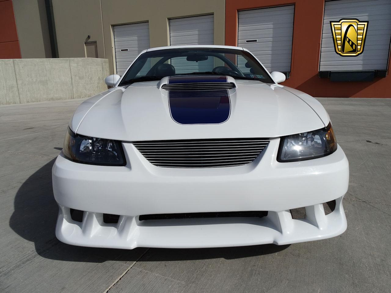 Large Picture of '02 Mustang - MZG0