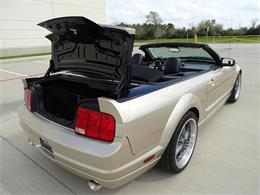 Picture of '08 Mustang - MZGA