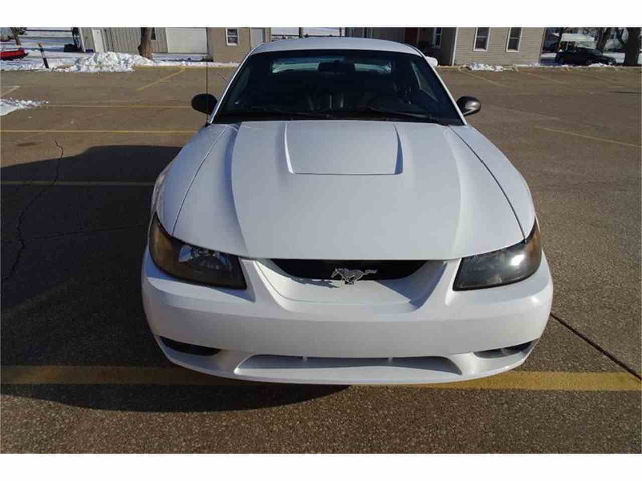 Large Picture of '99 Mustang SVT Cobra - MZKE