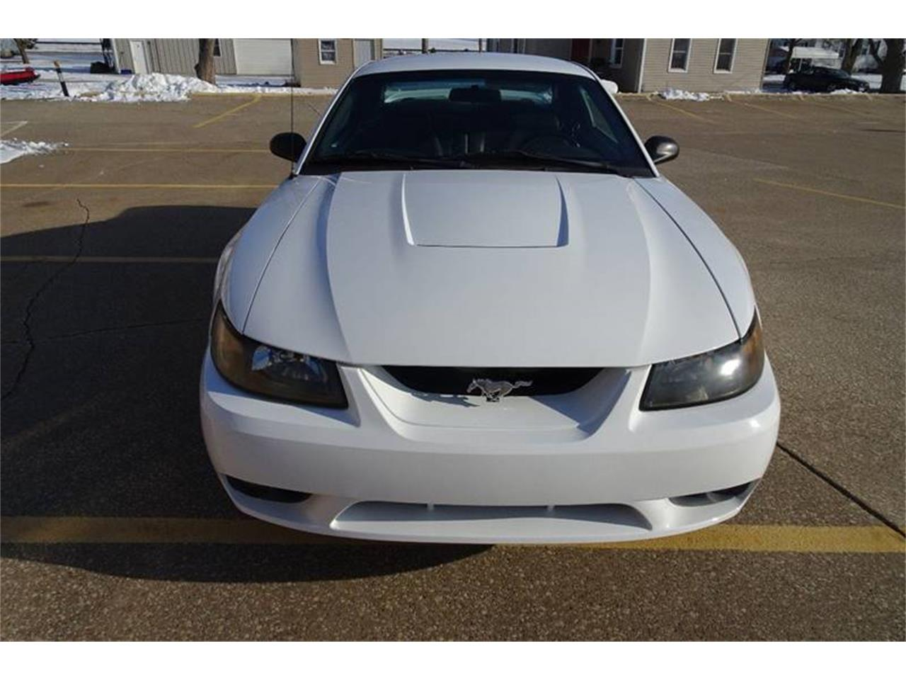 Large Picture of 1999 Mustang SVT Cobra located in Clarence Iowa - $11,995.00 - MZKE