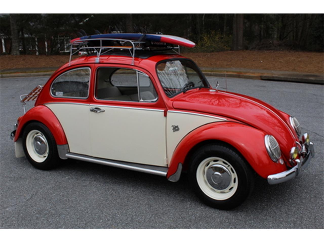 Large Picture of '66 Beetle - MXVF