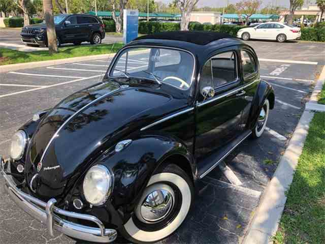 Picture of '60 Beetle - N0G4