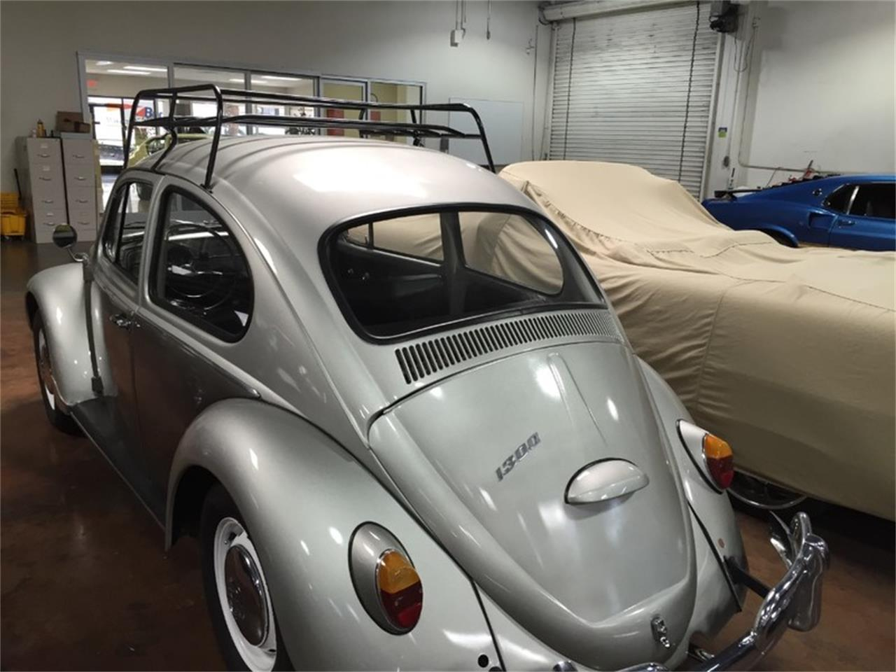 Large Picture of '66 Beetle - N0IU
