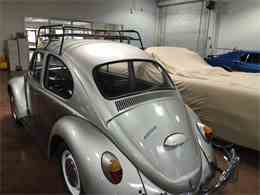 Picture of '66 Beetle Auction Vehicle - N0IU