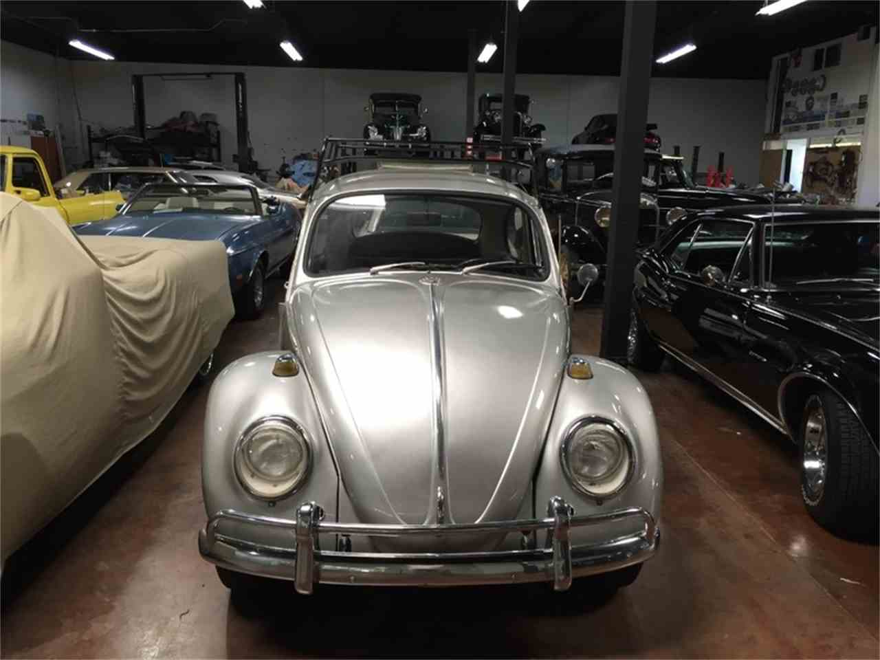 Large Picture of Classic '66 Volkswagen Beetle located in California Auction Vehicle Offered by California Supersport Auto - N0IU