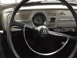 Picture of '66 Beetle - N0IU