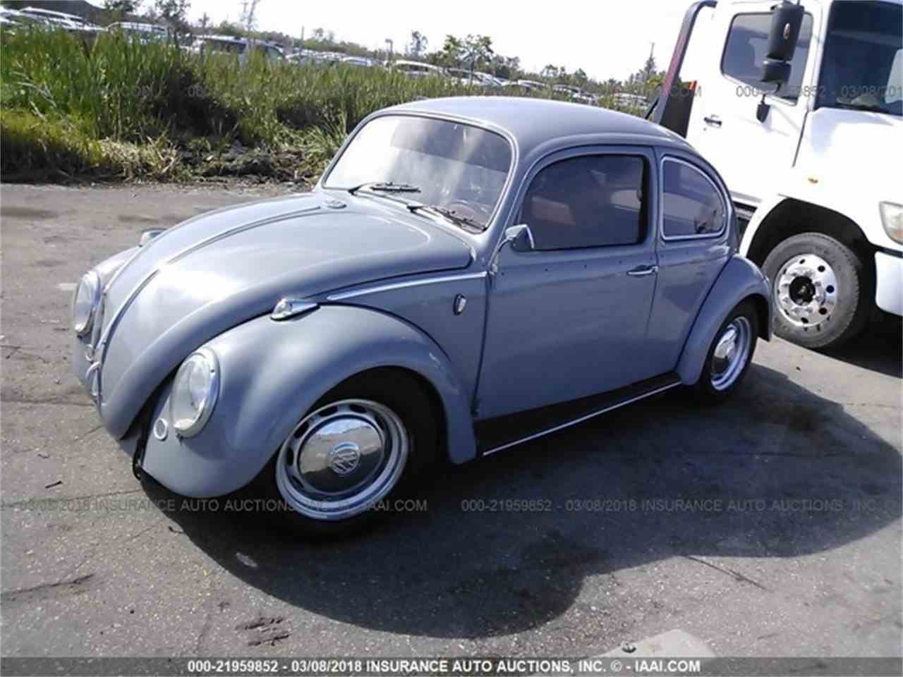 Large Picture of '66 Beetle - N0KE