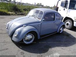 Picture of '66 Beetle - N0KE