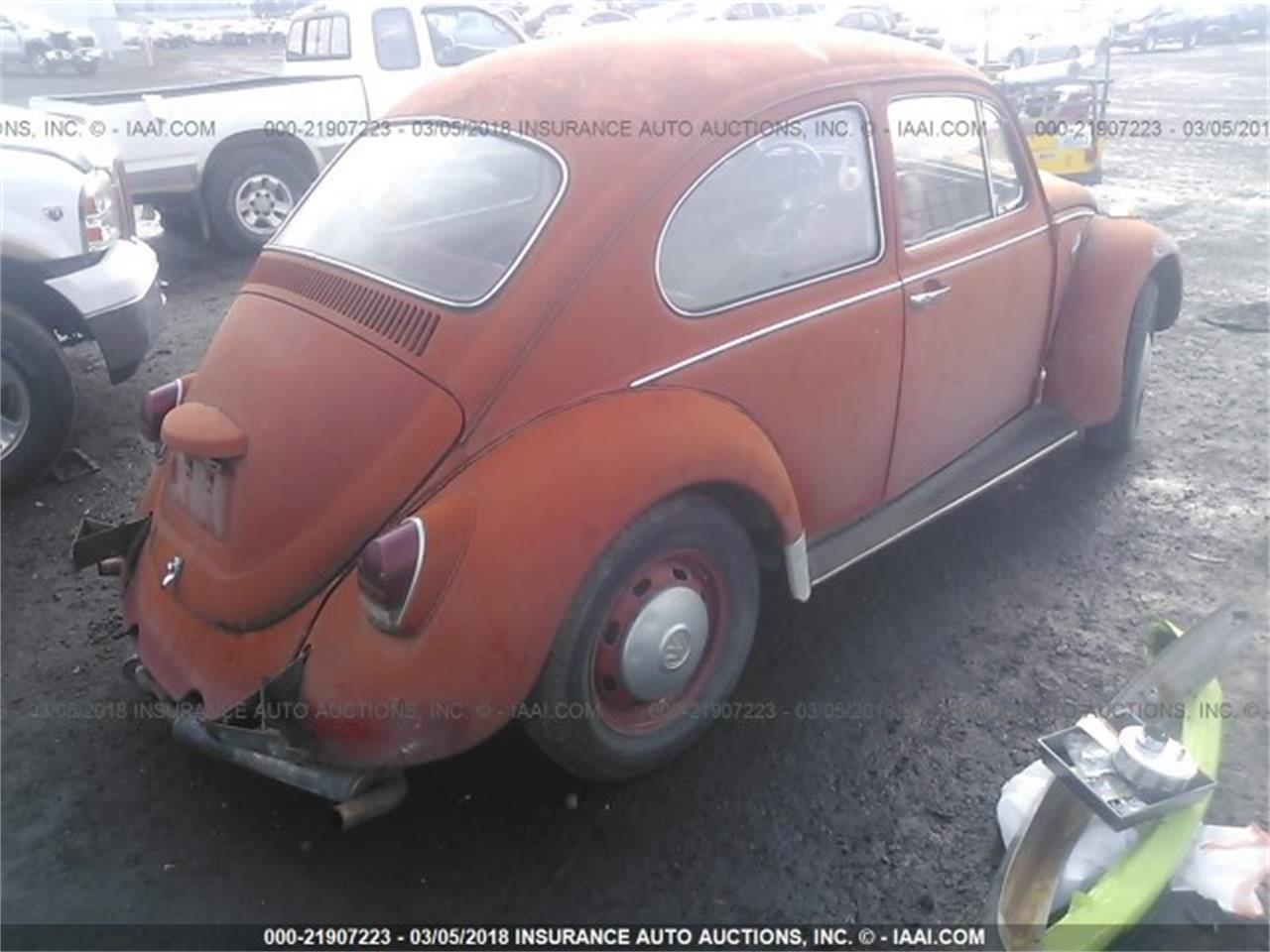 Large Picture of '69 Beetle - N0KO