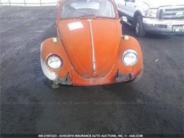 Picture of '69 Beetle - N0KO