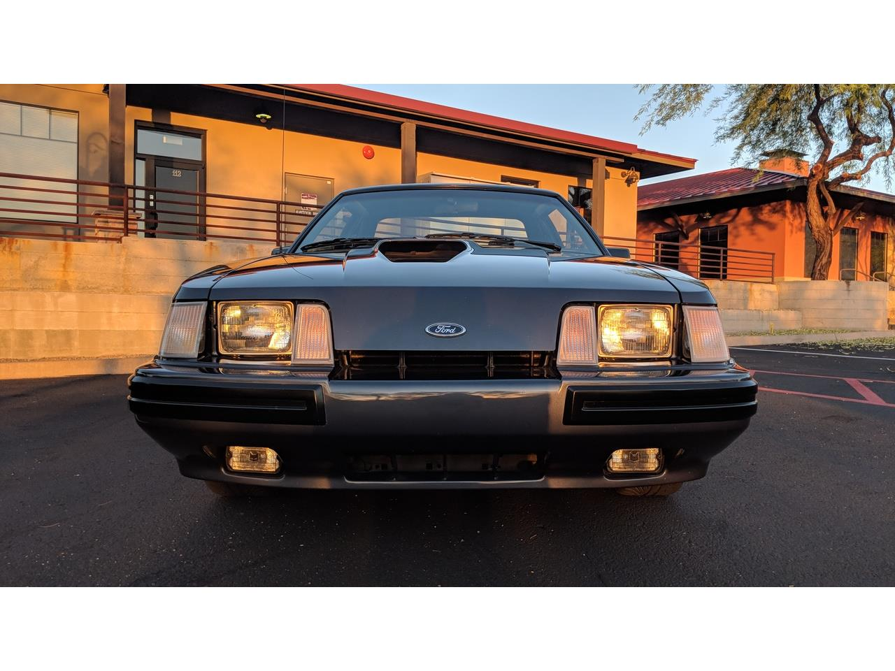 Large Picture of '84 Mustang SVO located in North Phoenix Arizona - $15,800.00 Offered by a Private Seller - MXZ6