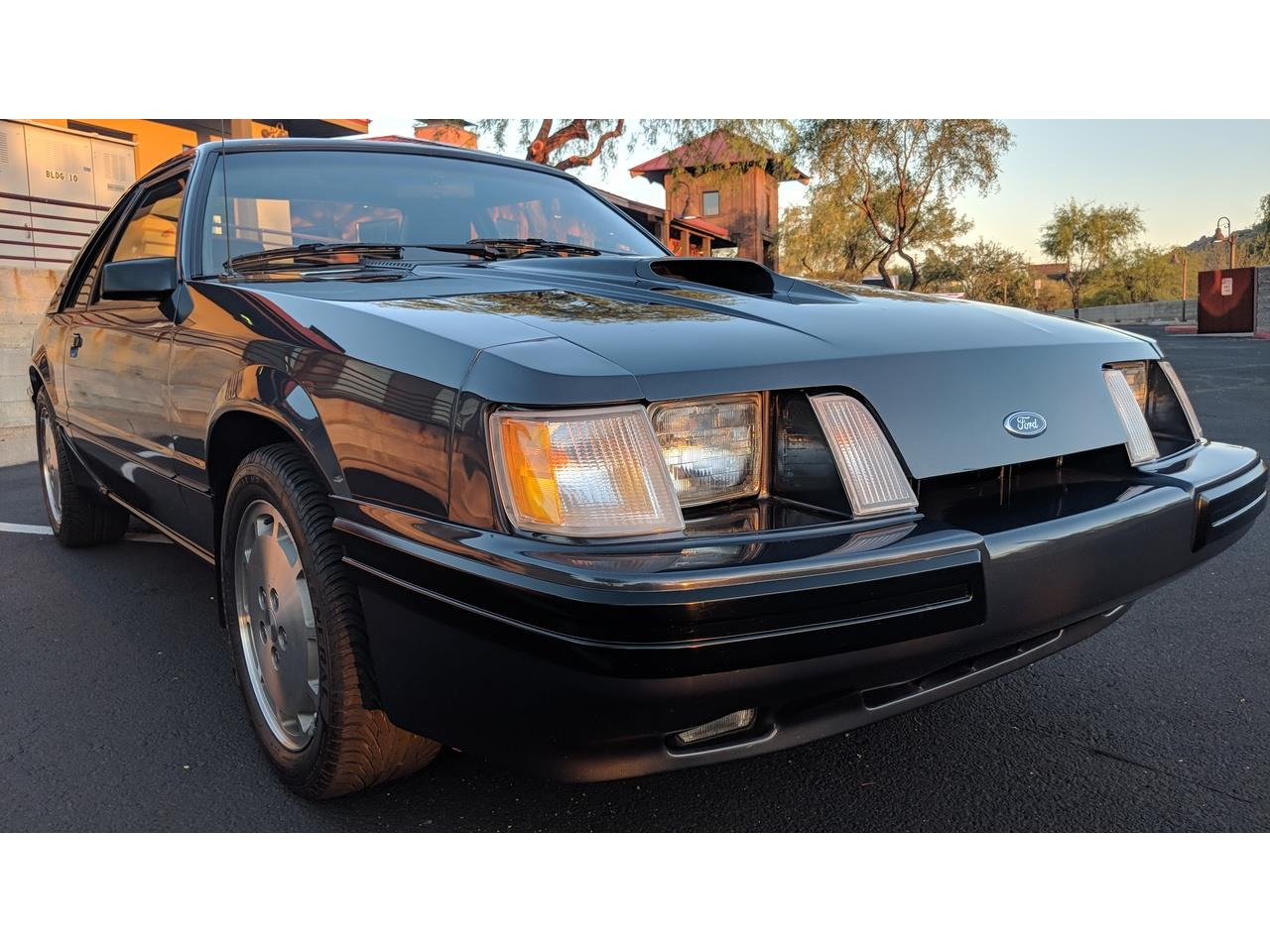 Large Picture of '84 Mustang SVO - MXZ6