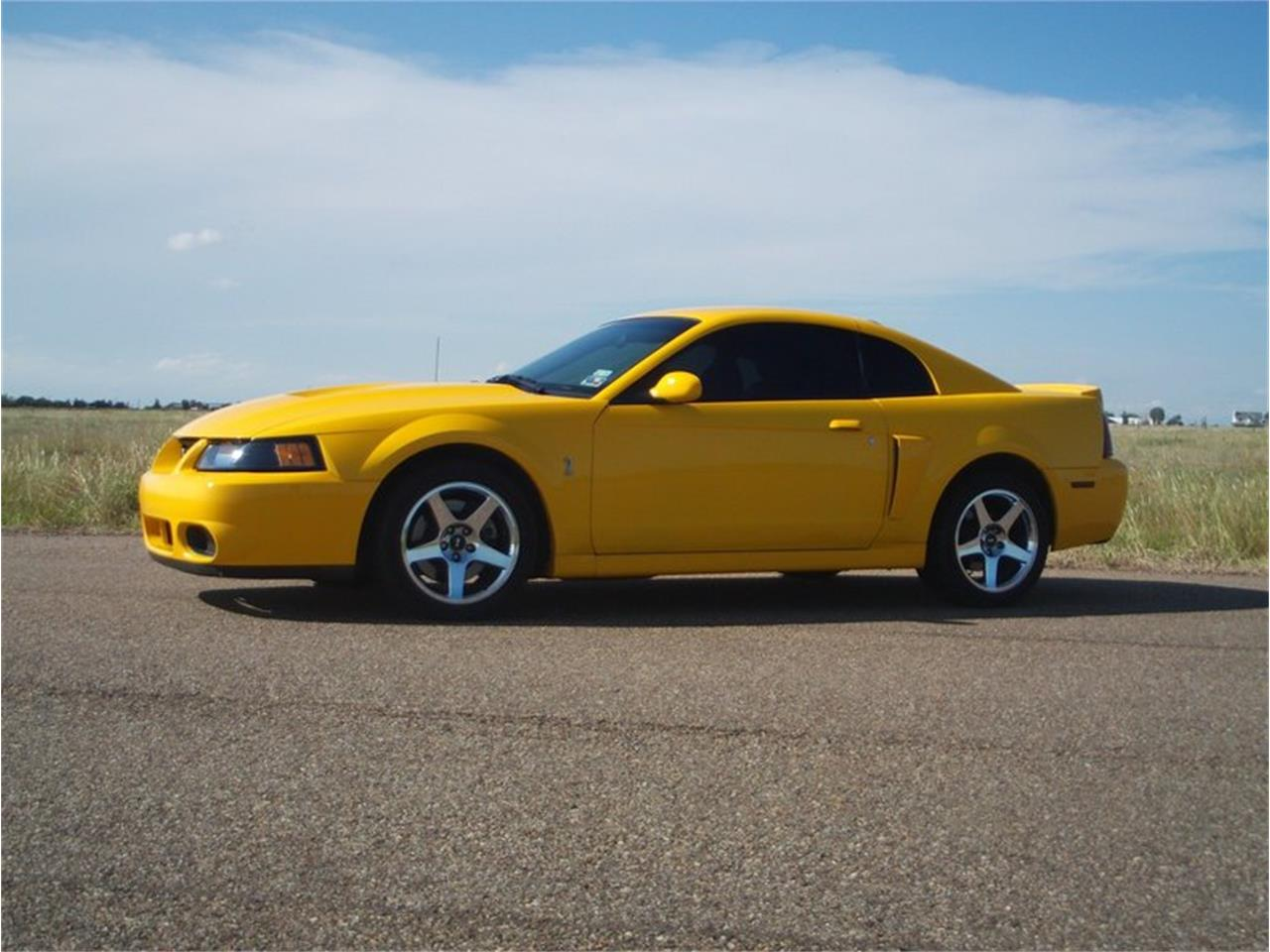 Large picture of 04 mustang svt cobra n2dq