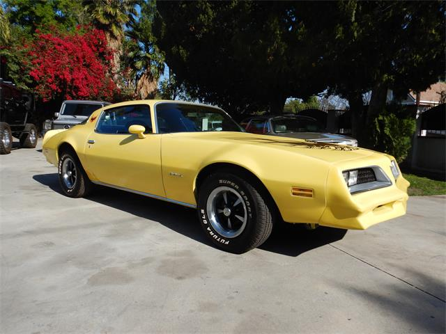 Picture of '78 Firebird - N643