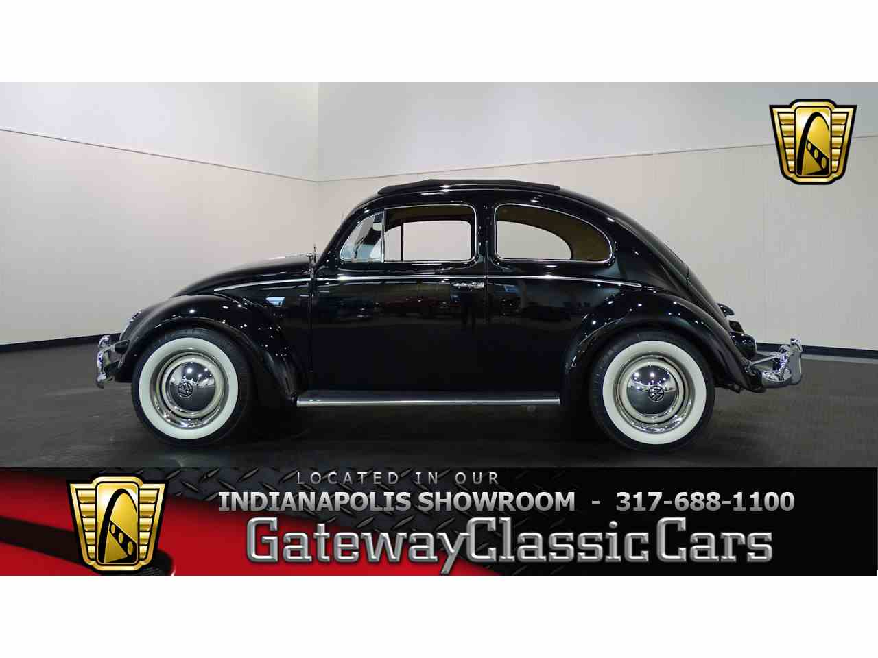 new contact indianapolis gls in a veh beetle volkswagen coupe