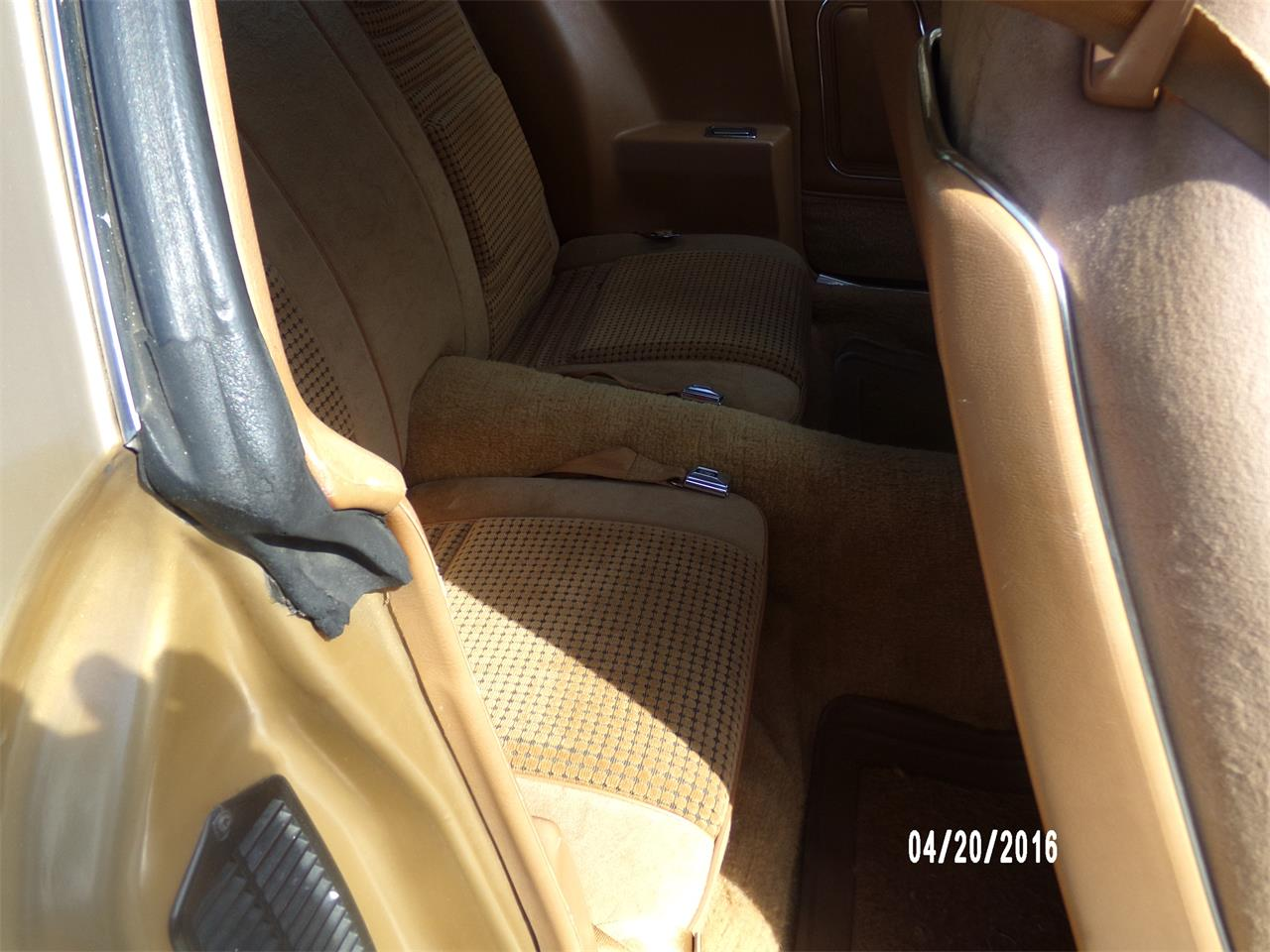 Large Picture of 1979 Pontiac Firebird Trans Am - $29,995.00 Offered by a Private Seller - N6LQ