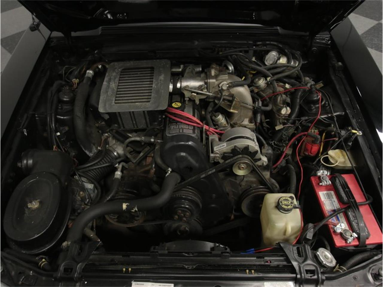 Large Picture of '86 Mustang - N79K