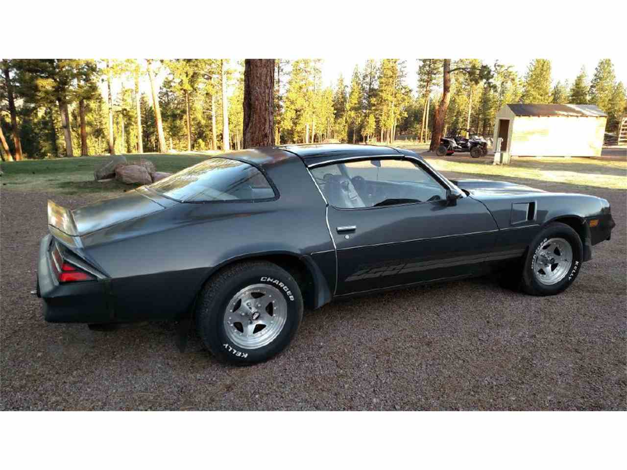 1981 chevrolet camaro z28 for sale cc 1083963. Black Bedroom Furniture Sets. Home Design Ideas