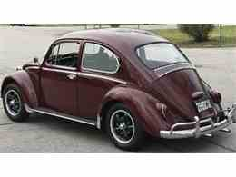 Picture of '66 Beetle - N8I8