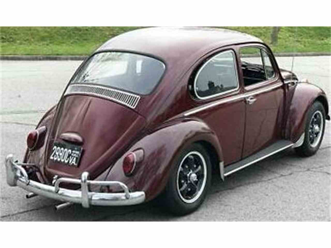 Large Picture of '66 Beetle - N8I8