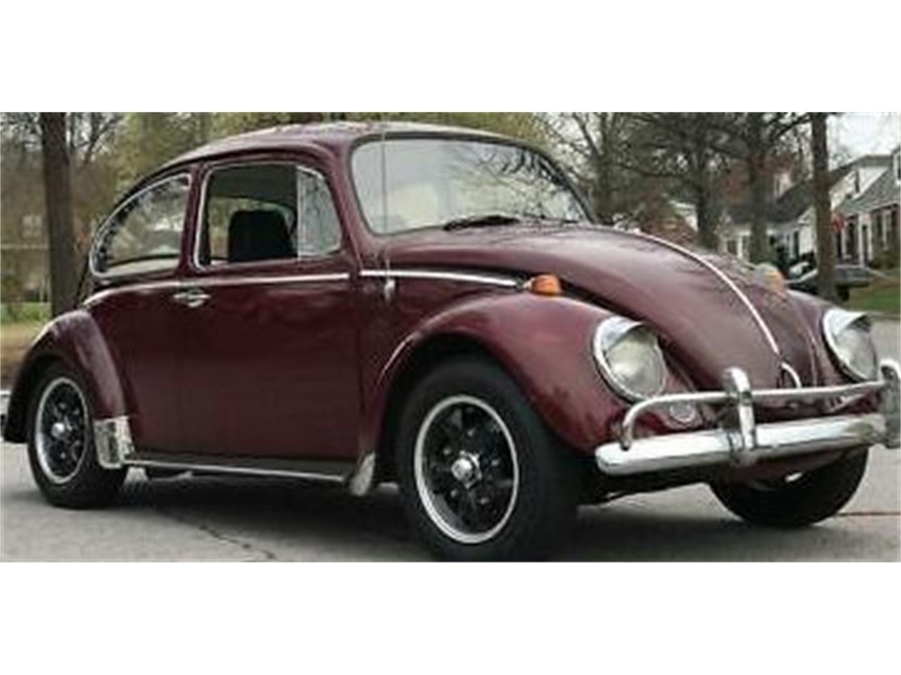 Large Picture of Classic '66 Volkswagen Beetle located in Cadillac Michigan Offered by Classic Car Deals - N8I8