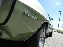 Picture of '69 Firebird - N8OD