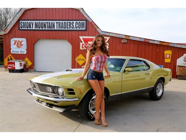 Picture of '70 Mustang Mach 1 - N8OG
