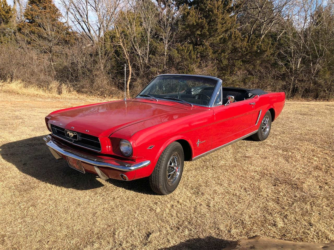 Large Picture of '65 Mustang Auction Vehicle - N8T8