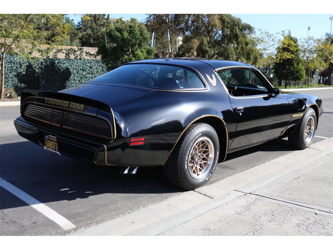 Large Picture of '79 Firebird Trans Am SE located in San Clemente California - $58,000.00 Offered by a Private Seller - N96U