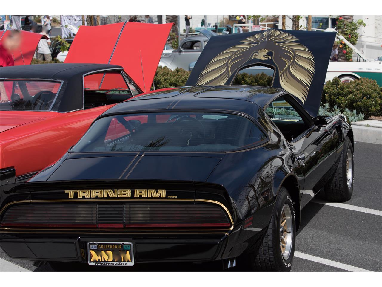 Large Picture of '79 Firebird Trans Am SE located in California - $58,000.00 Offered by a Private Seller - N96U