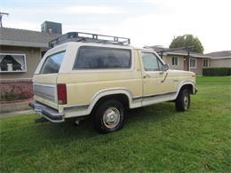 Picture of 1981 Ford Bronco located in San Bernardino California - $8,000.00 - N5DO