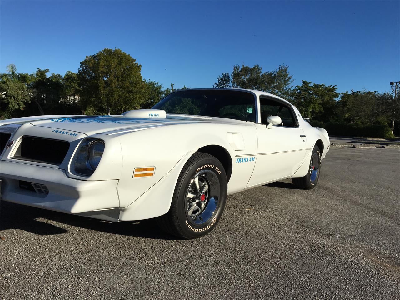 Large Picture of '76 Firebird Trans Am - NBW0