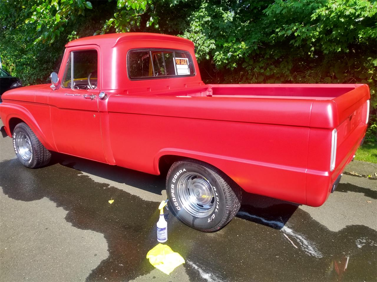 Large Picture of '65 F100 - NEBG