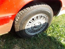 Picture of '79 Alfa Romeo Spider - NENM