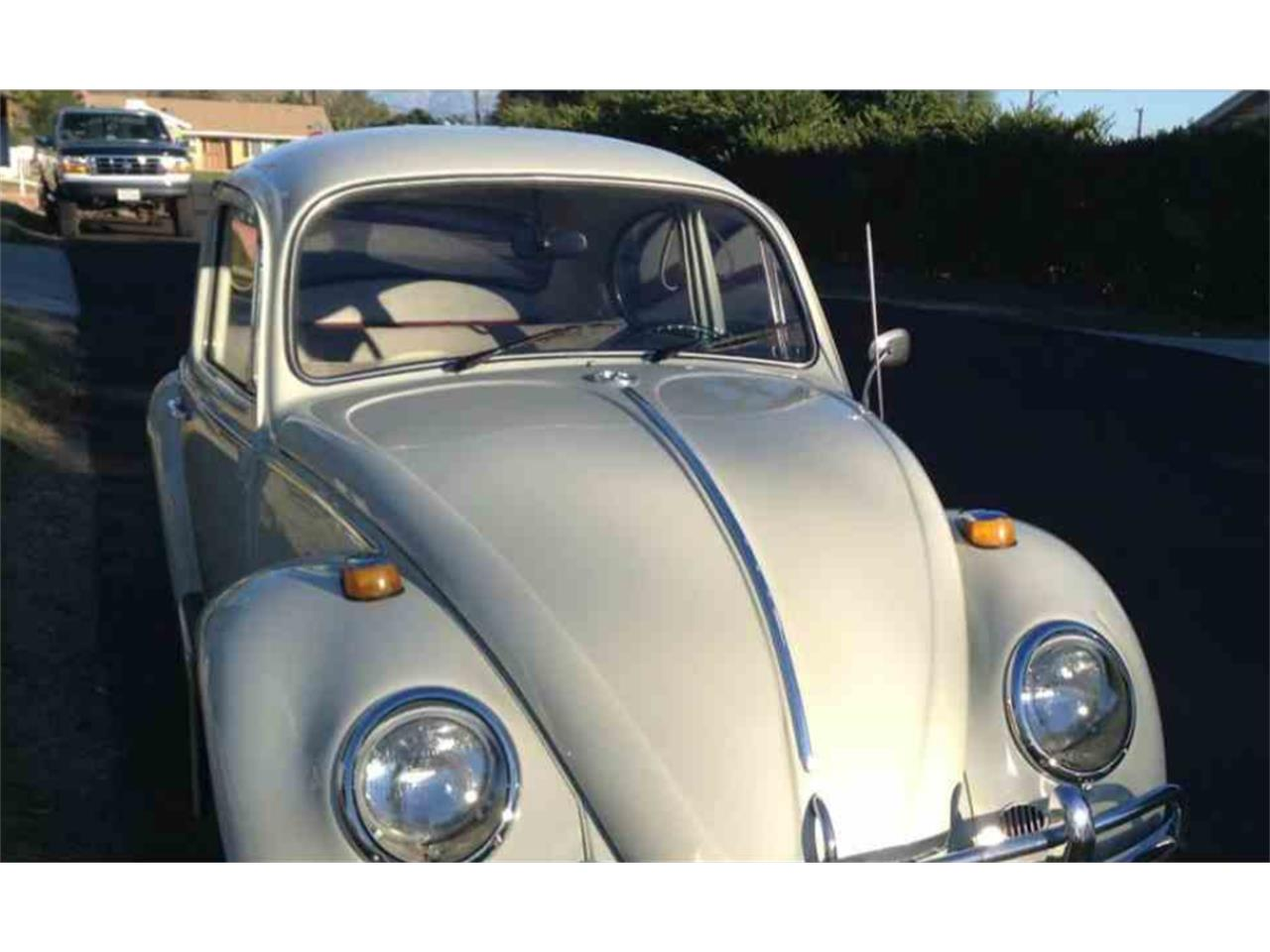 Large Picture of '66 Volkswagen Beetle - NG5F
