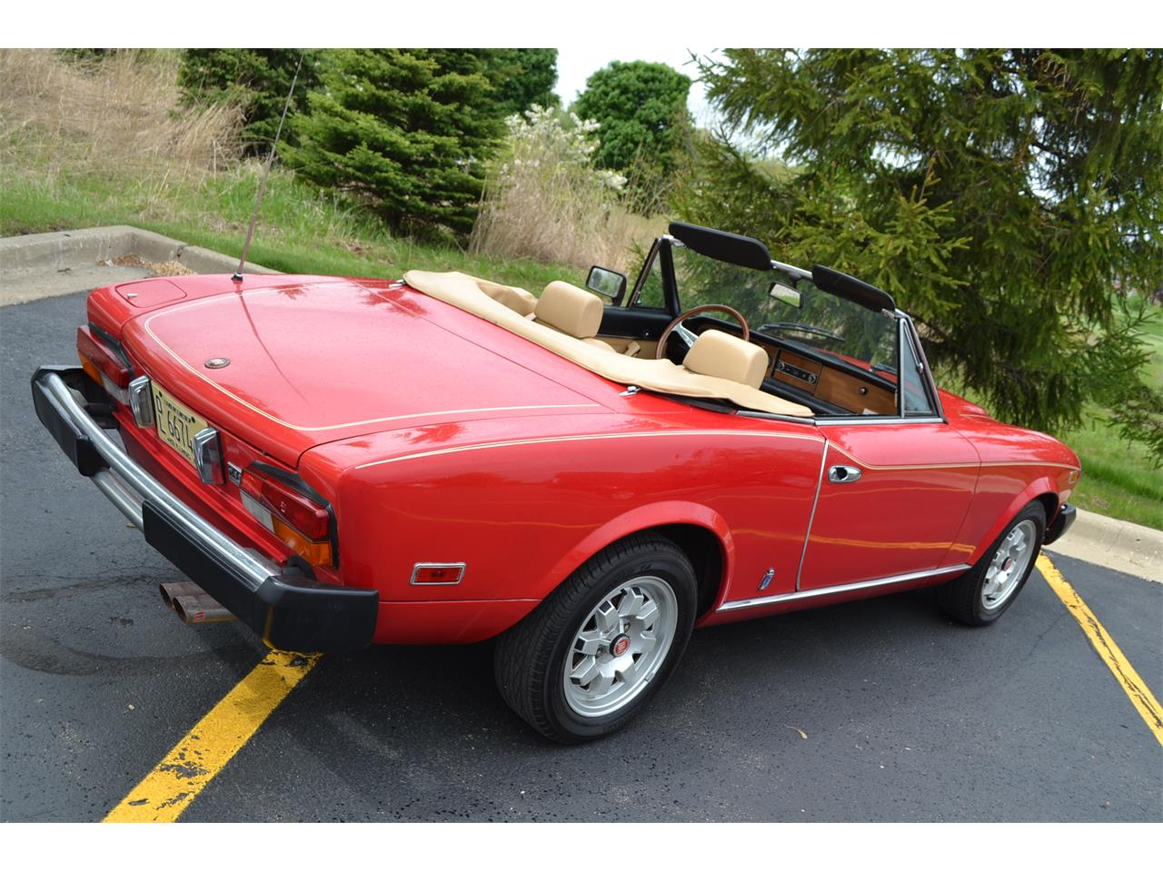 Large Picture of '82 Spider - NG7E