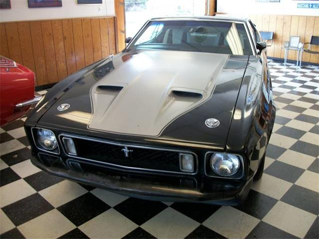Picture of Classic '73 Mustang - $17,500.00 - NDGS