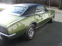 Picture of '68 Firebird - NH80
