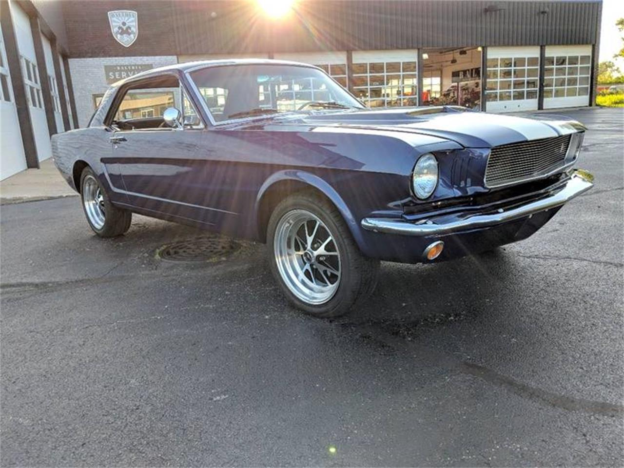 Large Picture of '66 Mustang - NIUO