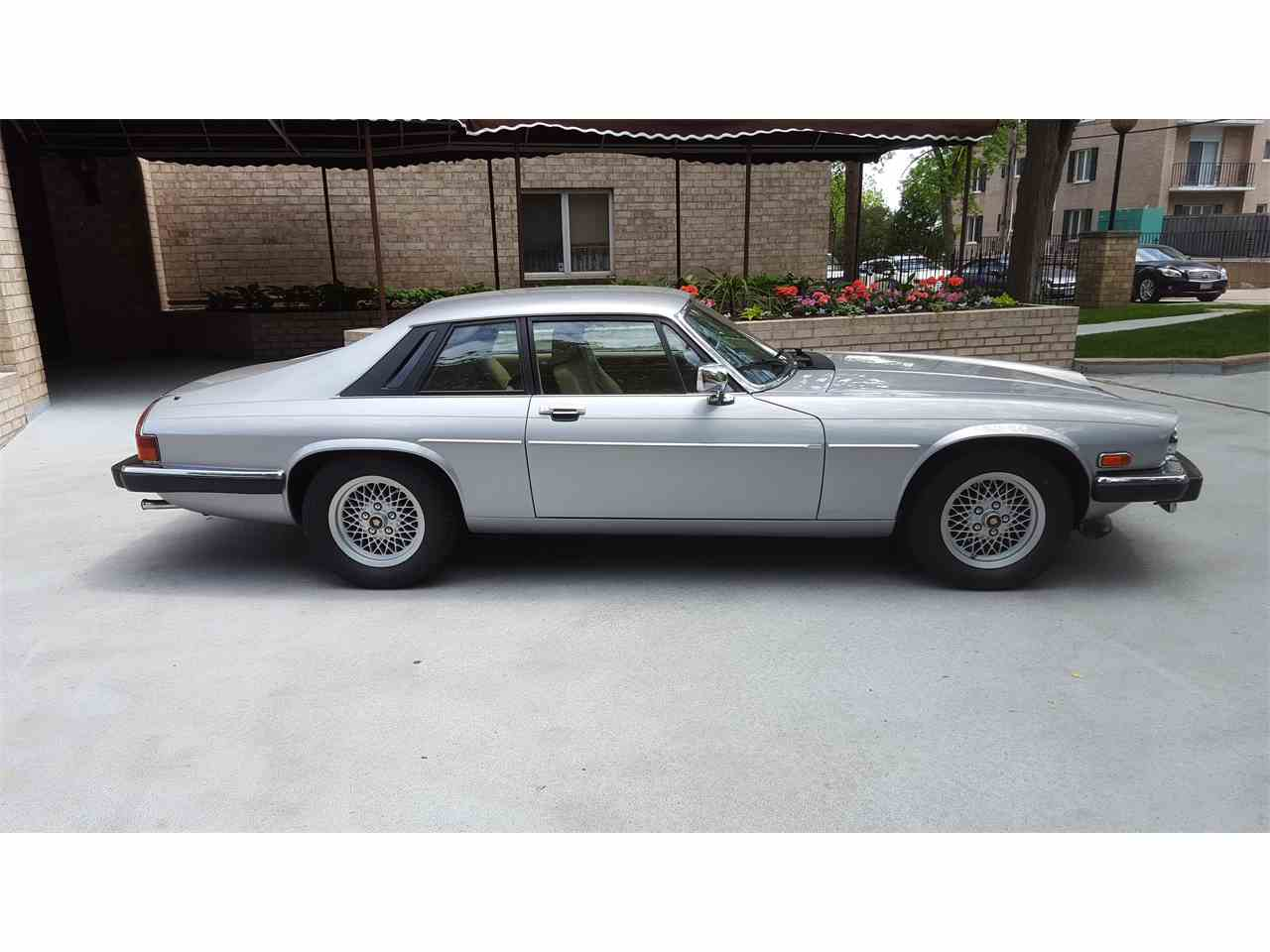 Large Picture of '90 XJS - NIUT