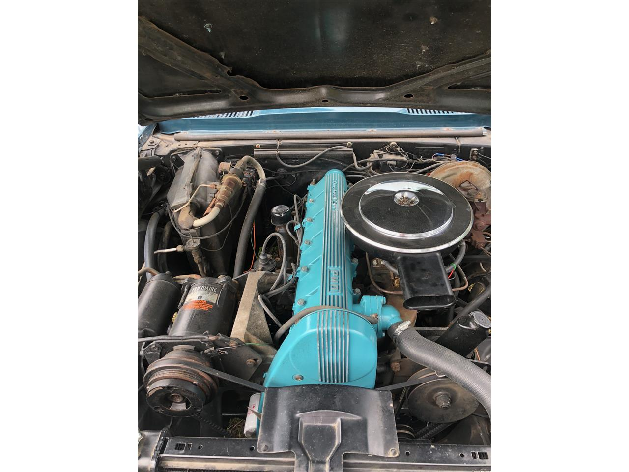 Large Picture of '67 Firebird - NK2Y