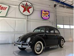 Picture of 1956 Volkswagen Beetle located in Florida Offered by Premier Auction Group - NKI3