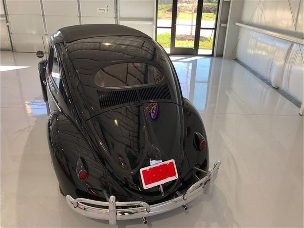 Large Picture of Classic 1956 Beetle located in Florida Auction Vehicle - NKI3