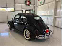 Picture of '56 Beetle - NKI3