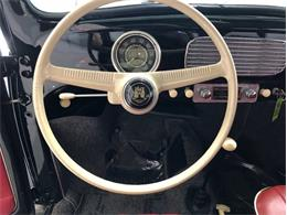 Picture of Classic '56 Beetle Auction Vehicle Offered by Premier Auction Group - NKI3