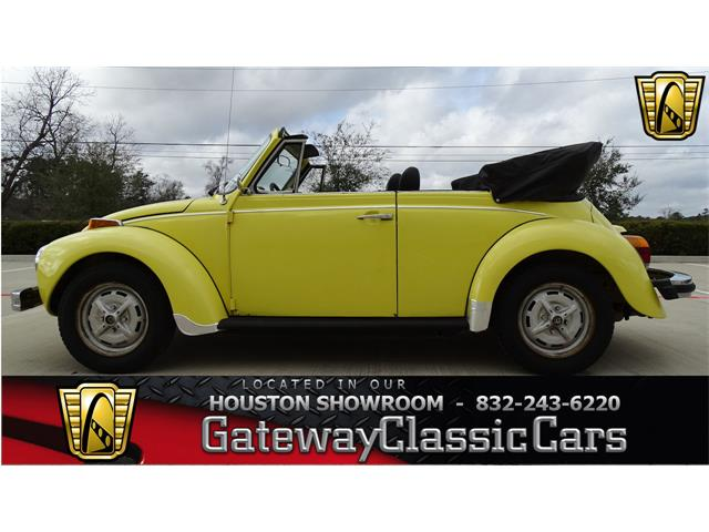 Picture of '79 Beetle - NDT2