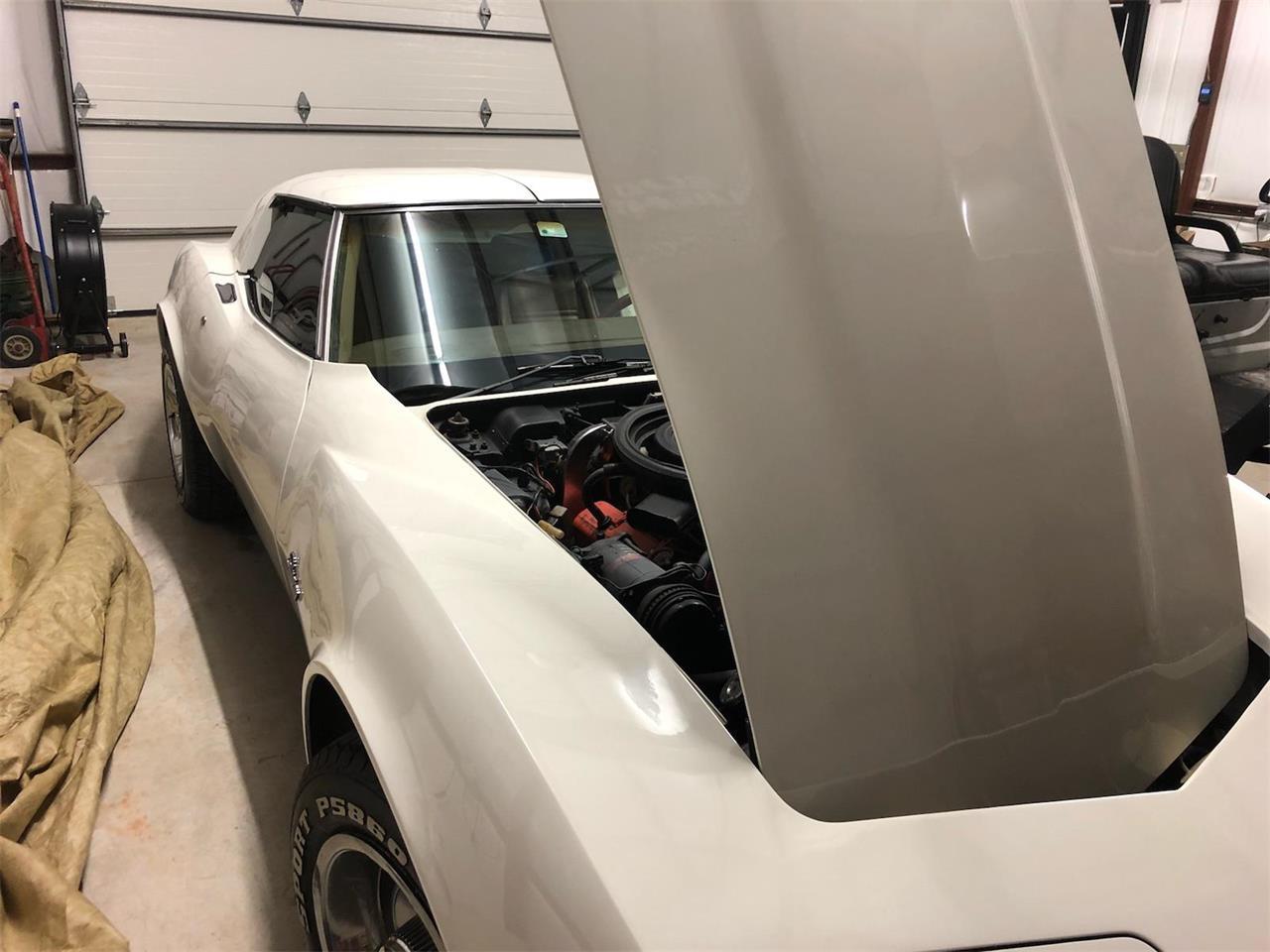 Large Picture of '75 Corvette - NLPT