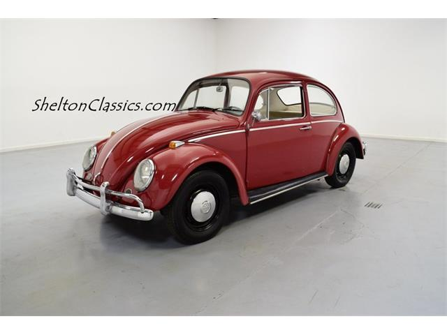 Picture of '66 Beetle - NLPZ