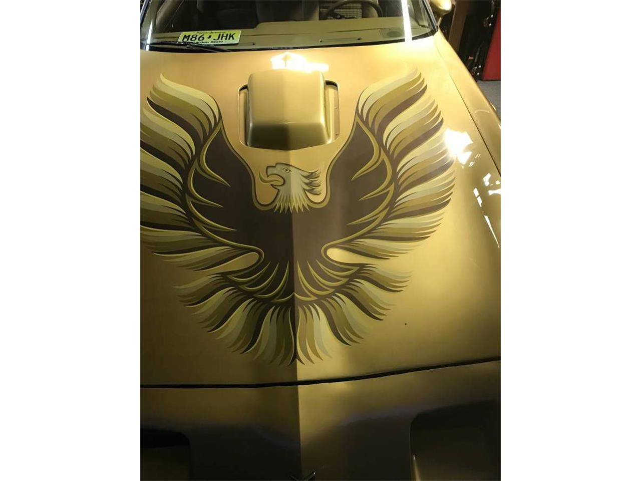 Large Picture of '81 Firebird Trans Am - NLYT