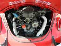 Picture of '71 Beetle - NMA8